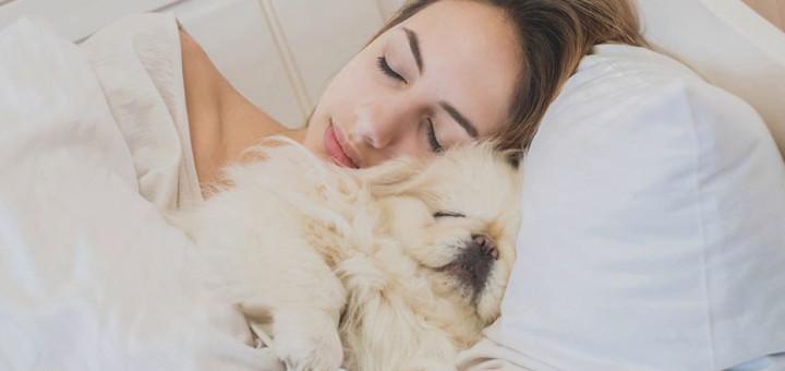 Dormire con il proprio animale domestico, fa bene?